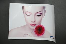 Self Adhesive Vinyl prinited oleh pencetak pelarut eco 3.2m (10 kaki) WER-ES3202 4